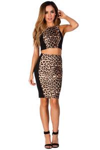 Leopard Print Color Block Two Piece Dress Set image