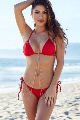 Red Triangle Bikini Top image